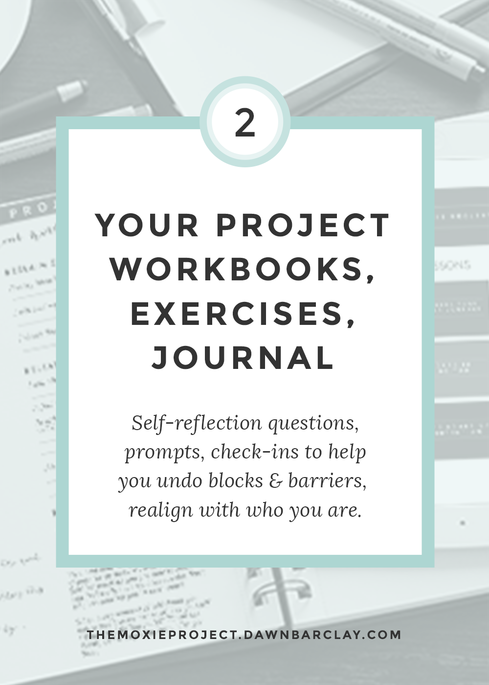 Project Workbooks
